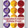 Edible Print - Cupcake and Cookie Toppers Layout