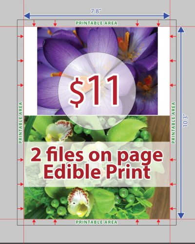 Edible Print - 2 Files on Page Layout