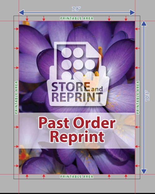 Past Order Reprint - Edible Print