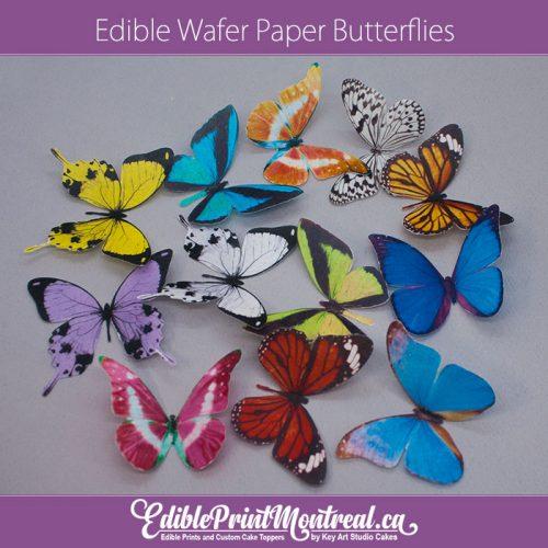 Edible Wafer Paper Butterflies pre-cut