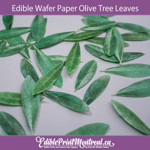 Edible Wafer Paper Olive Tree Leaves Leaf Set for wedding Birthday Cake Cupcakes Cookies