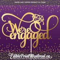 170GN We're Engaged Cake Topper